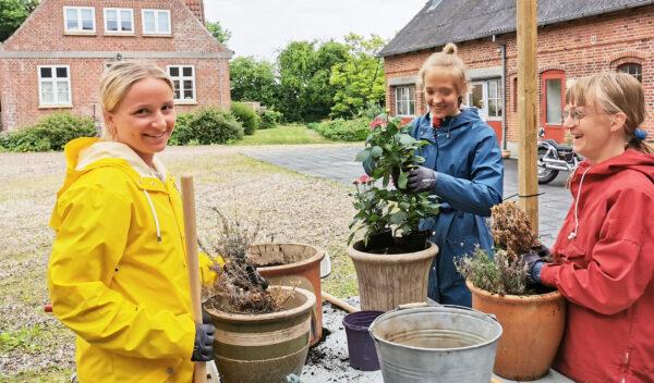 Udplantning af blomster - fra faget have og håndværk.