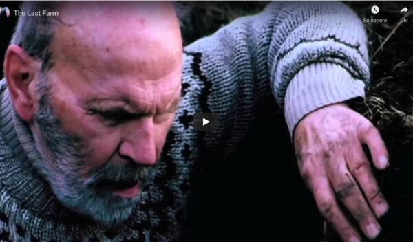 """En af de kort film, som vi ser er instruktør Runar Runarssons smukke film""""Sidste gård."""""""
