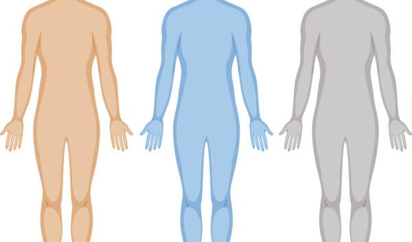 Vi kan have mange forskellige syn på den samme krop.