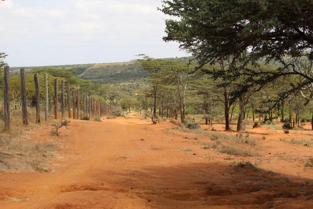 Sådan ser noget af landskabt ud omkring platformen vi bor på. Uldum Højskoles tur til Kenya i Afrika.